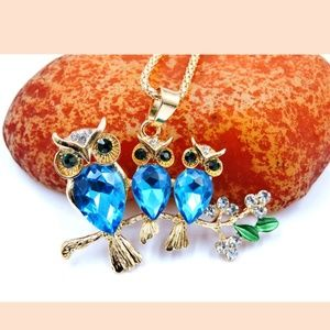 Betsey Luv 🦉 Owl Large necklace floral rhinestone